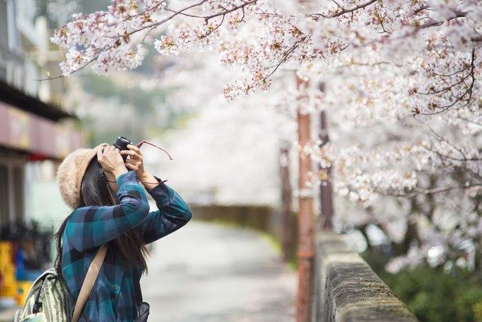 静岡の観光スポット10と寄り道まとめ:王道スポットでグルメも楽しもう♪